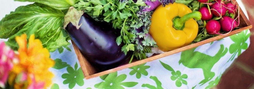 vegetables-790022_1280 (2)